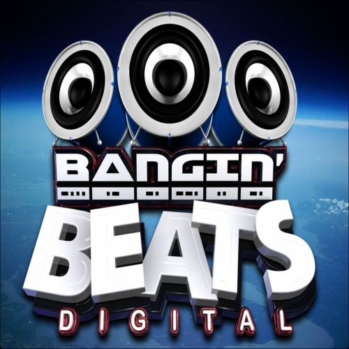 Mr Gee & Eufeion Feat. Taya - Your Not The One - Banginbeats Digital - 05:19 - 04.09.2014