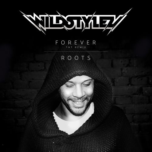 Wildstylez - Roots - Lose Control Music - 05:08 - 18.09.2015