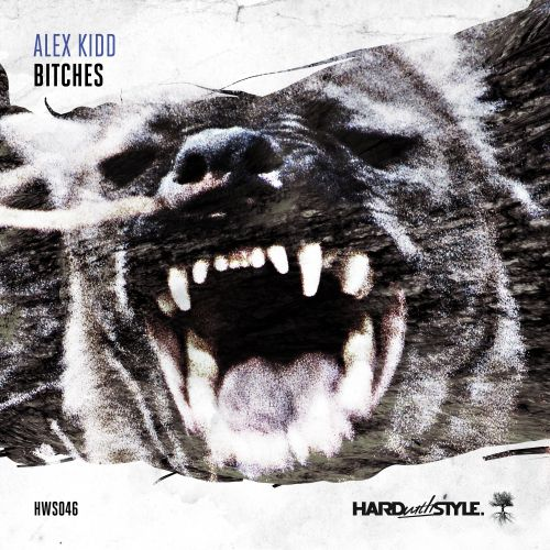 Alex Kidd - Bitches - HARD with STYLE - 03:09 - 14.11.2016