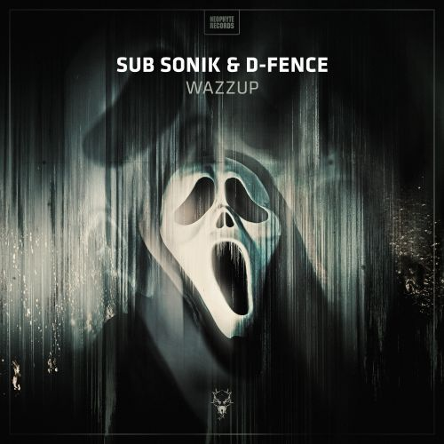 Sub Sonik & D-Fence - Wazzup - Neophyte - 04:02 - 24.11.2016