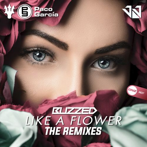 Buzzed - Like A Flower - DNZ Records - 06:13 - 19.11.2019