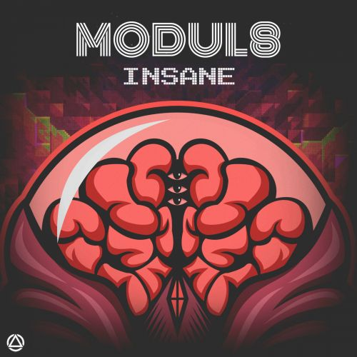 Modul8 - Insane - Ellivium Music - 04:12 - 13.03.2020