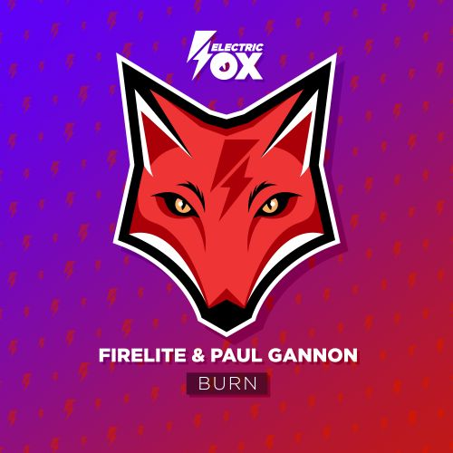 Firelite and Paul Gannon - Burn - Electric Fox - 04:33 - 06.04.2020
