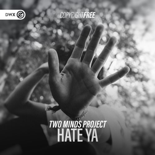Two Minds Project - Hate Ya - DWX Copyright Free - 03:40 - 20.01.2021